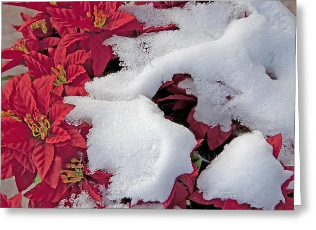 Old-fashioned Christmas 7 - Gardener Village Greeting Card by Steve Ohlsen