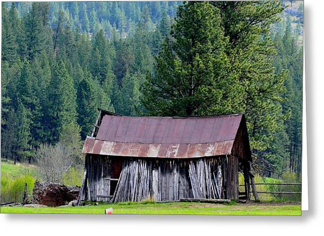 Old Homestead Greeting Card by Linda Larson
