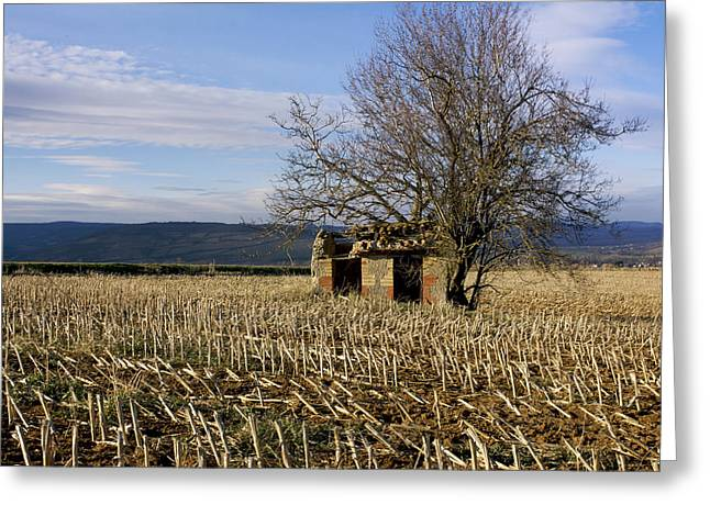 Old Hut Isolated In A Field. Auvergne. France Greeting Card