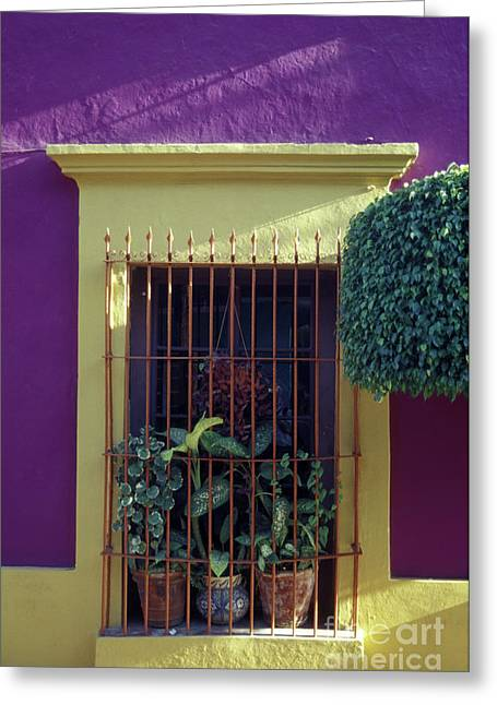 Greeting Card featuring the photograph Old Mazatlan Window by John  Mitchell