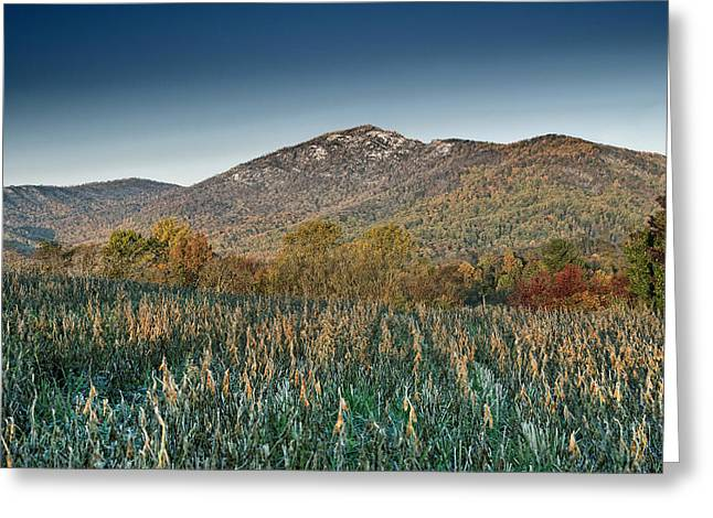 Old Rag Mountain Autumn Scene - Virginia Greeting Card