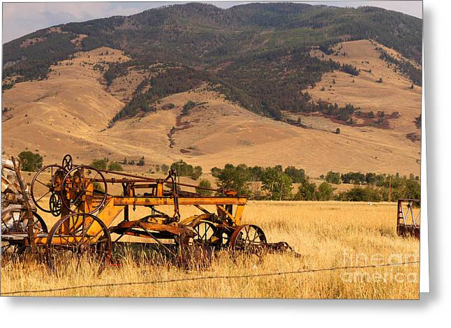 Old Road Grader Greeting Card by Rick Mann