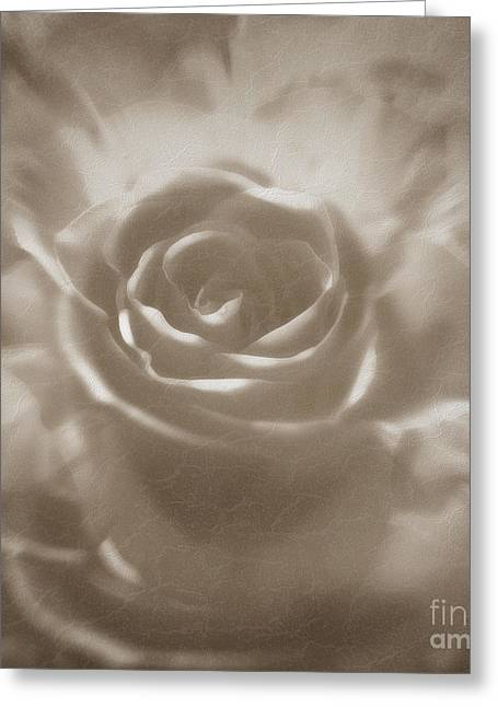 Greeting Card featuring the digital art Old Rose by Johnny Hildingsson