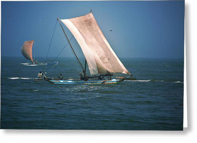 Old Sail Boat Greeting Card by Dumindu Shanaka