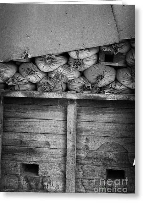 old sandbags and firing positions in restricted area of the UN buffer zone in the green line cyprus Greeting Card