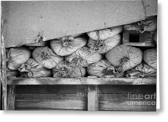 old sandbags and firing positions in restricted area of the UN buffer zone in the green line nicosia Greeting Card