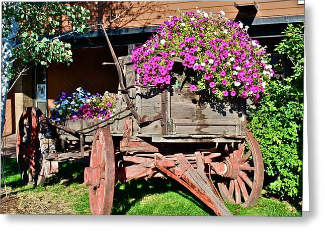 Old Wagon Wheel With Flowers Greeting Card