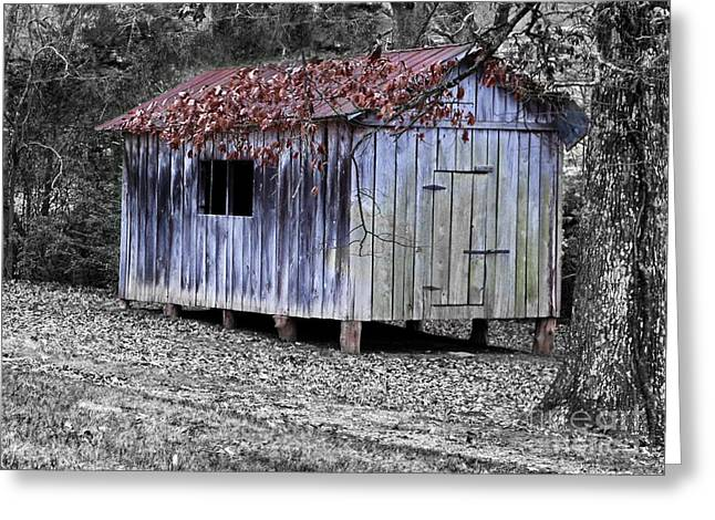 Old Weathered Shed Greeting Card by Betty LaRue