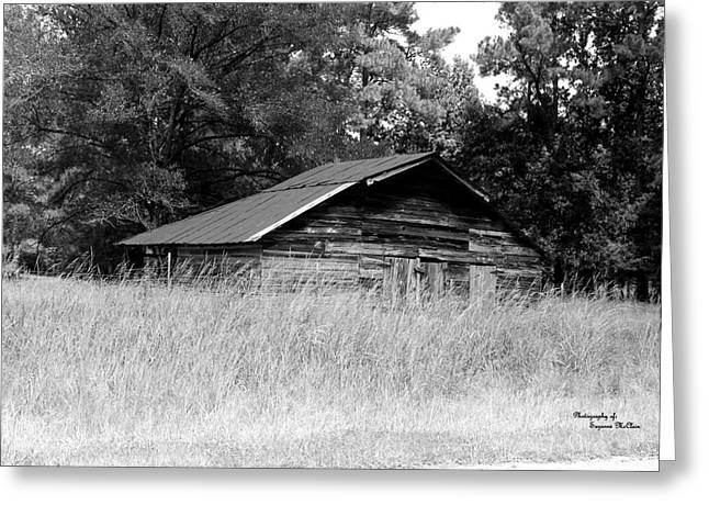 Olde Homestead Greeting Card by Suzanne  McClain