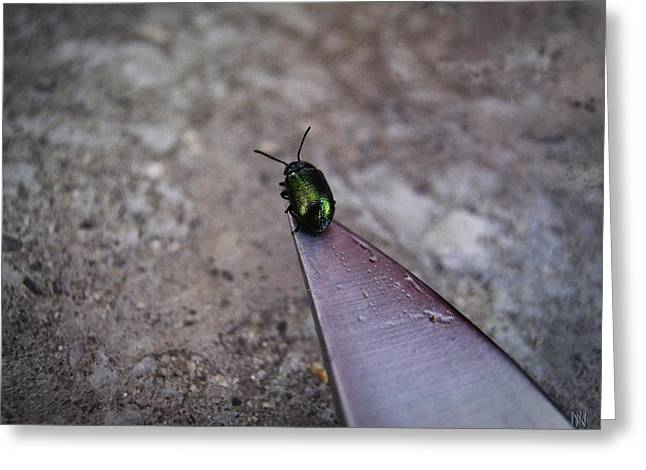 On A Knife Edge Greeting Card by Nafets Nuarb