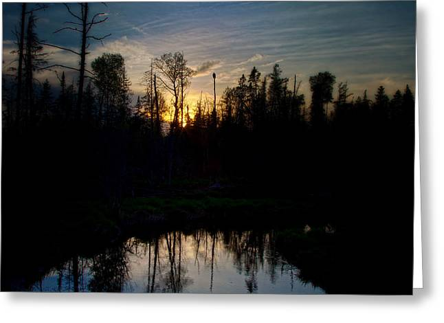 On A Summers Night Greeting Card by Gary Smith