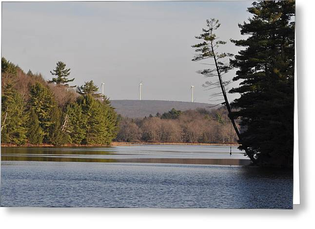 On Bear Creek Lake Greeting Card by Bill Cannon