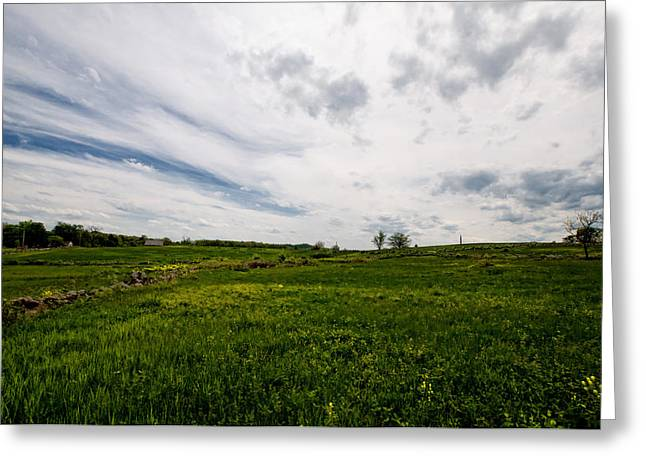 On Fields Of Yellow And Green Greeting Card by Laura George