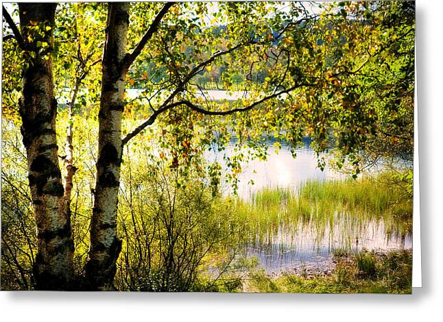On The Shore Of The Loch Achray. Scotland Greeting Card