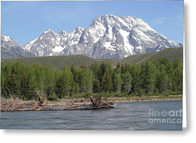 On The Snake River Greeting Card by Living Color Photography Lorraine Lynch