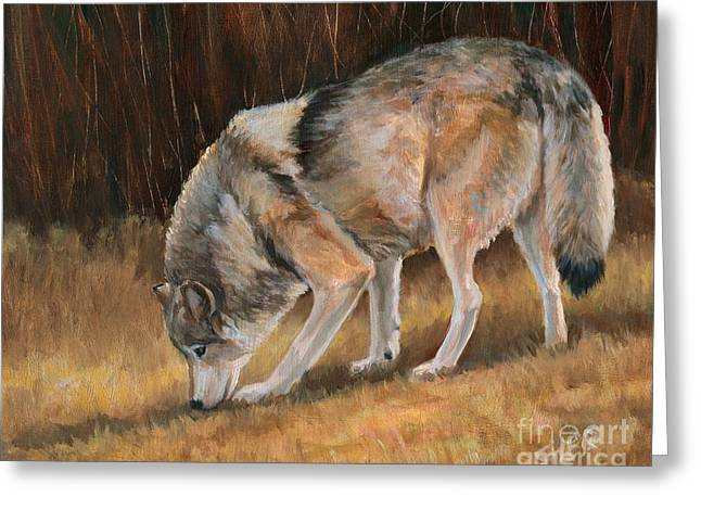 On The Trail - Wolf Greeting Card