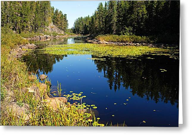 On The Way To East Lunch Lake Greeting Card by Larry Ricker
