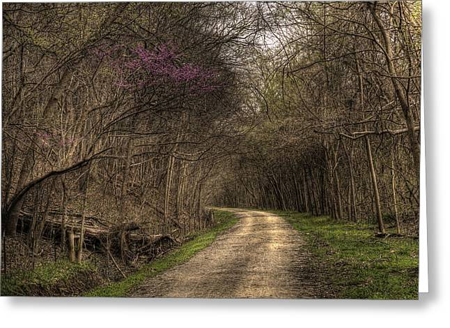 On This Trail Greeting Card by William Fields