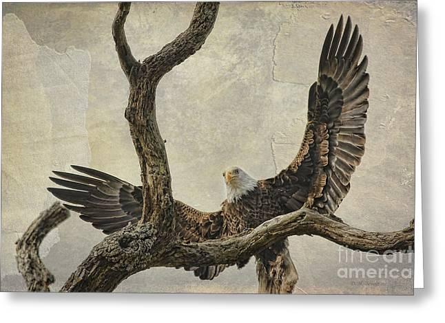 On Wings High Greeting Card by Deborah Benoit