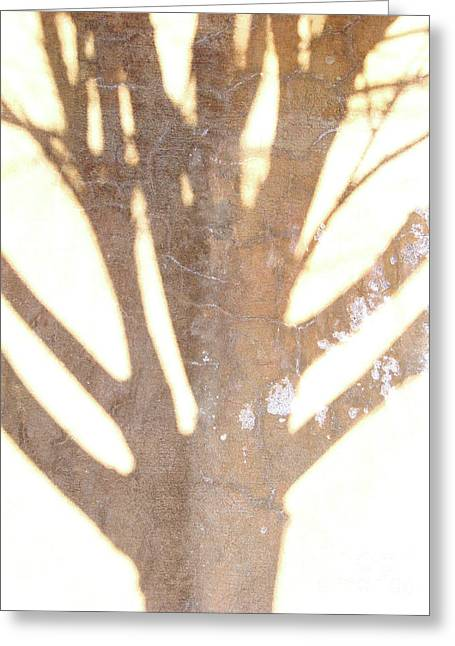 Once Upon A Tree Greeting Card