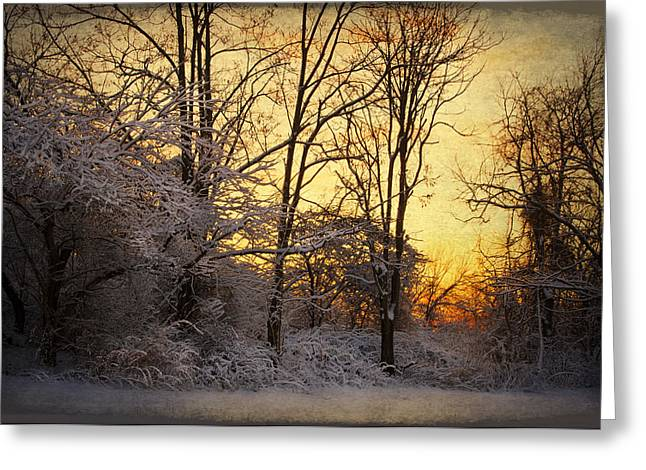 Once Upon A Winter Morning.. Greeting Card