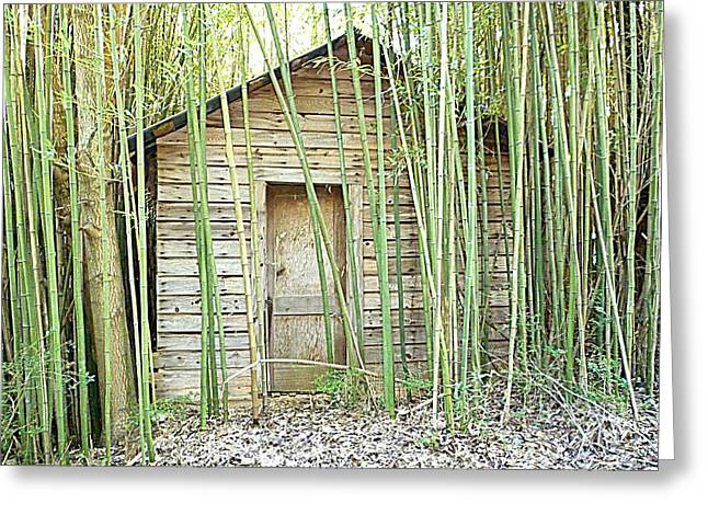 One Room House With Bamboo Greeting Card