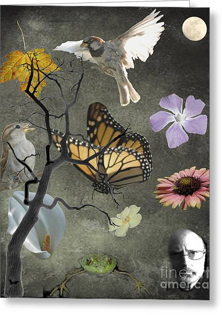 One Small Corner Of Creation Greeting Card by Jim Wright