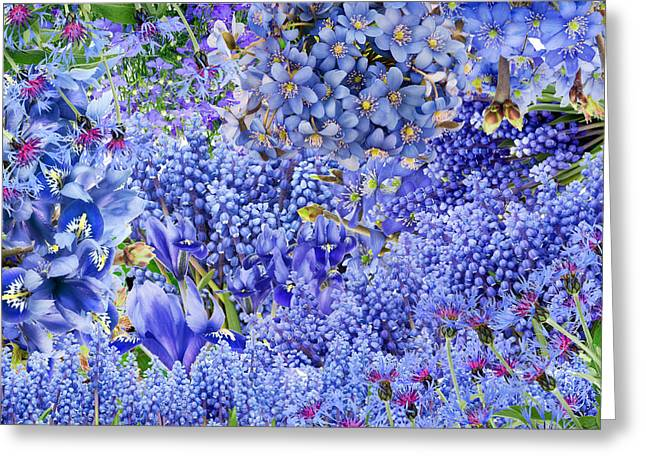 Only Blue Flowers Greeting Card