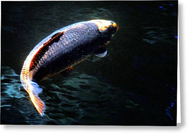 Optical Koi Llusion Greeting Card by Don Mann