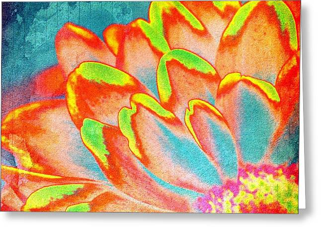 Orange And Yellow Petals Of Color Greeting Card by Cathie Tyler
