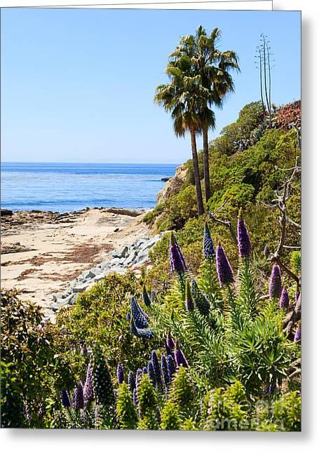 Orange County California Coastline Photo Greeting Card