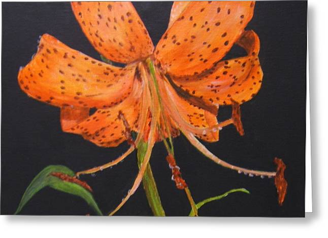 Orange Day Lilies Greeting Card by Maureen Pisano