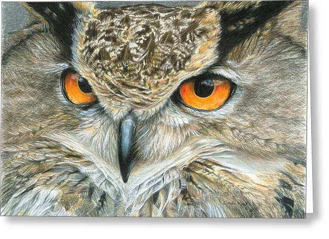 Orange-eyed Owl Greeting Card