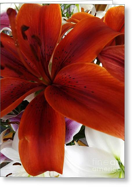 Greeting Card featuring the photograph Orange Glow by Gary Brandes