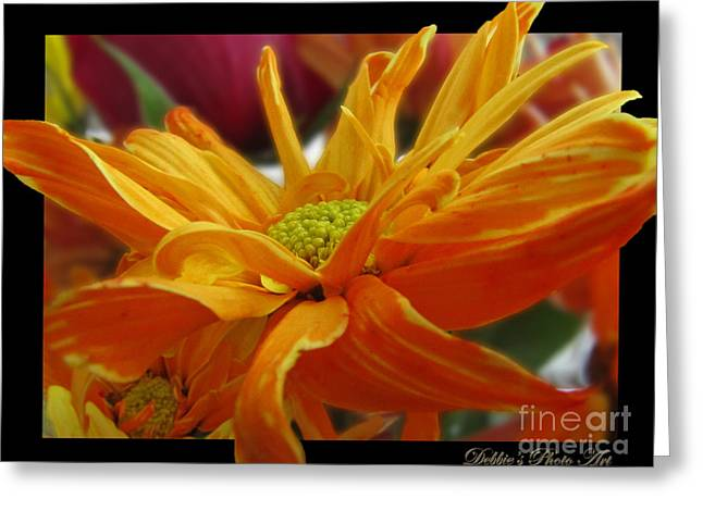 Greeting Card featuring the photograph Orange Juice Daisy by Debbie Portwood