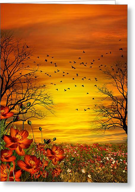 Orange Meadow Montage Greeting Card