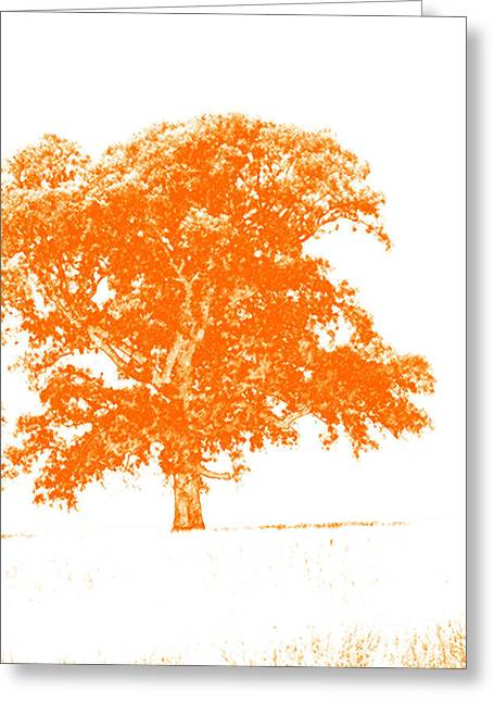 Orange Oak Greeting Card by Alan Look