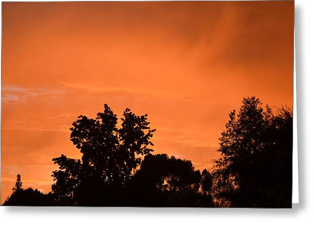 Orange Sky Greeting Card by Naomi Berhane