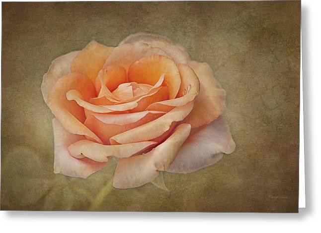Orange Sorbet Greeting Card by Cheryl Davis
