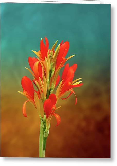 Orange Spray Of Flowers On Golden Blue Greeting Card by Michael Taggart II