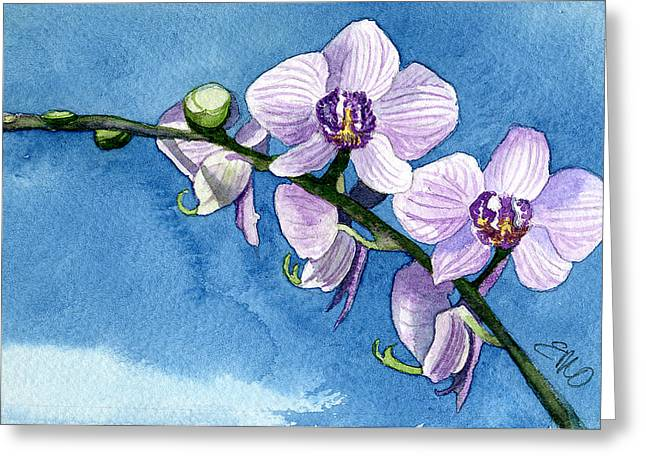 Orchid Greeting Card by Eunice Olson