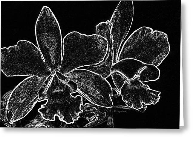 Orchids - Black And White Abstract Greeting Card