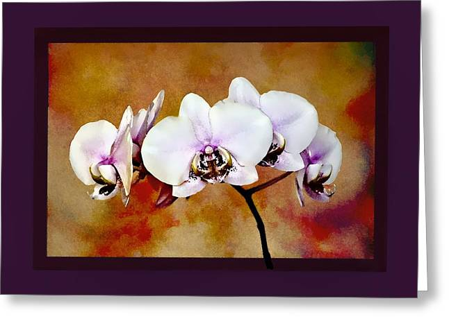 Greeting Card featuring the painting Orchids by Mary Morawska