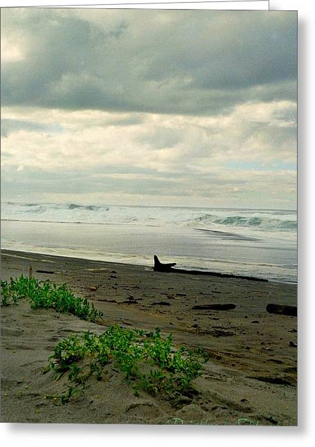 Greeting Card featuring the photograph Oregon Coast 17 by Deahn      Benware