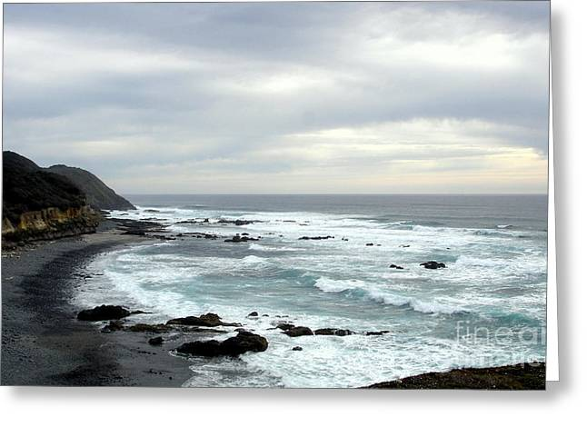 Oregon Coast  2 Greeting Card by Tanya  Searcy