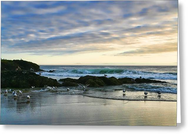 Oregon Coast At Dusk Greeting Card by Bonnie Bruno