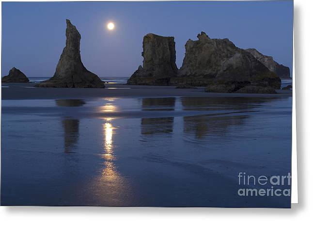 Oregon Coast Greeting Card by John Shaw and Photo Researchers