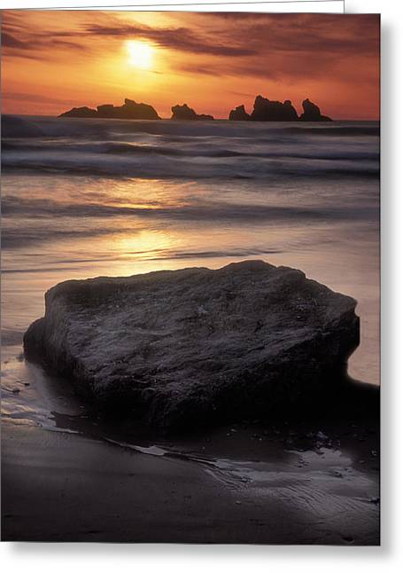 Oregon Sunset Greeting Card by Dave Mills