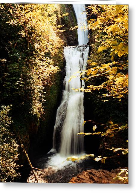 Greeting Card featuring the photograph Oregon Waterfall Yellows by Maureen E Ritter