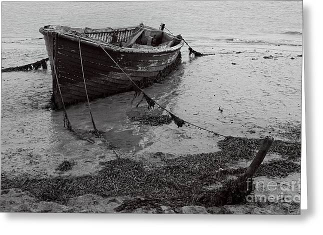 Orford Wreck Greeting Card by Darren Burroughs